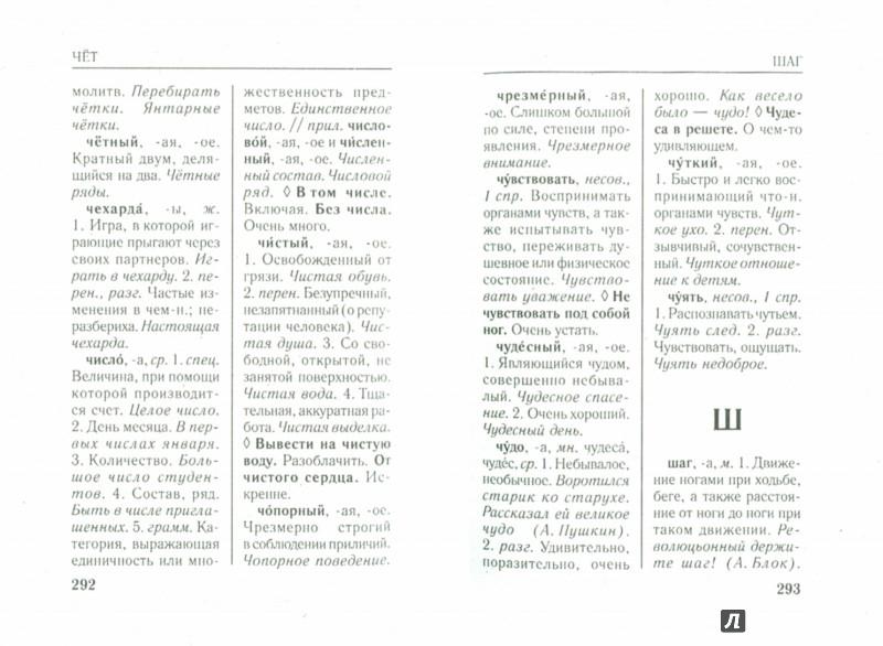 Иллюстрация 1 из 9 для Русский язык. Самые важные словари - Алабугина, Михайлова, Нечаева, Субботина | Лабиринт - книги. Источник: Лабиринт