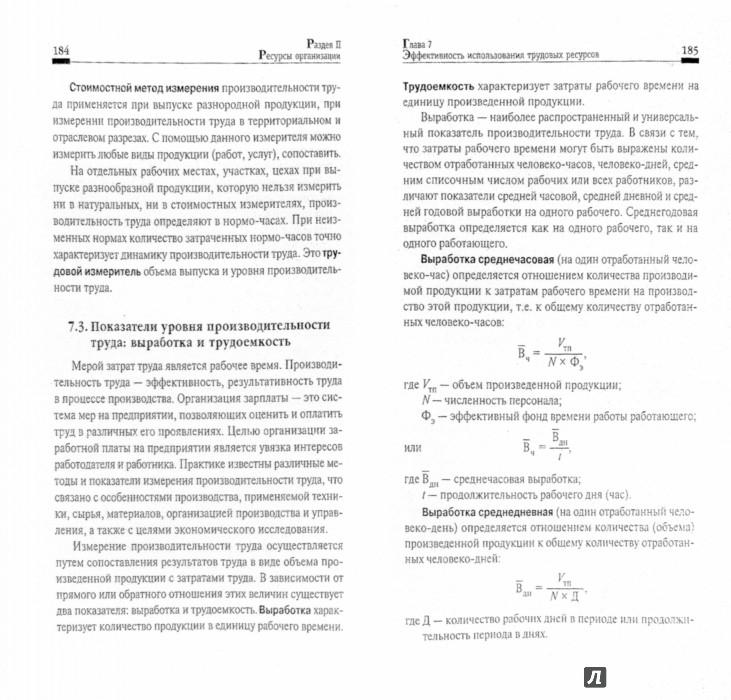 Иллюстрация 1 из 10 для Экономика организации. Учебное пособие - Чечевицына, Чечевицына | Лабиринт - книги. Источник: Лабиринт
