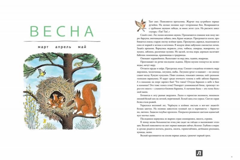 Иллюстрация 1 из 62 для В лесу - Петр Багин | Лабиринт - книги. Источник: Лабиринт