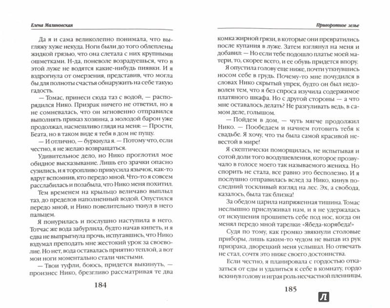 Иллюстрация 1 из 7 для Хозяйка магической лавки. Книга 1. Приворотное зелье - Елена Малиновская | Лабиринт - книги. Источник: Лабиринт