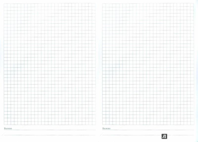 Иллюстрация 1 из 8 для Тетрадь Копибук (СИНЯЯ, 96 листов, А5, клетка, закрывается на резинку) (38943-15) | Лабиринт - канцтовы. Источник: Лабиринт