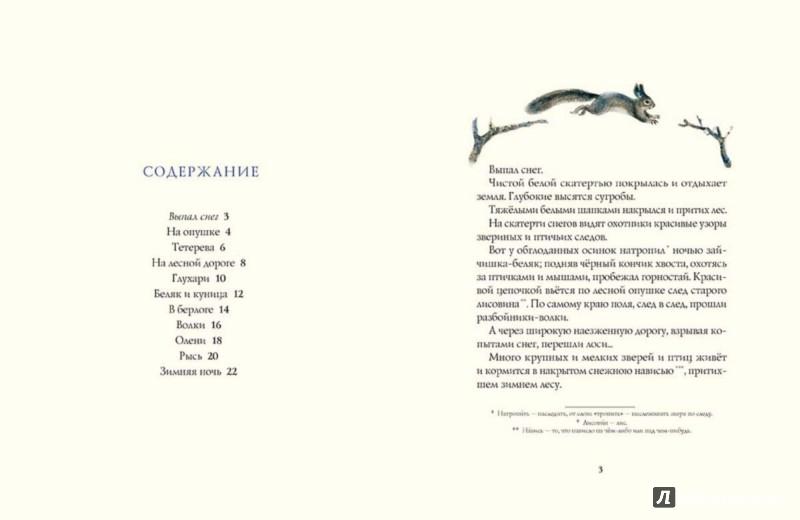 Иллюстрация 1 из 58 для Зима в лесу - Иван Соколов-Микитов | Лабиринт - книги. Источник: Лабиринт
