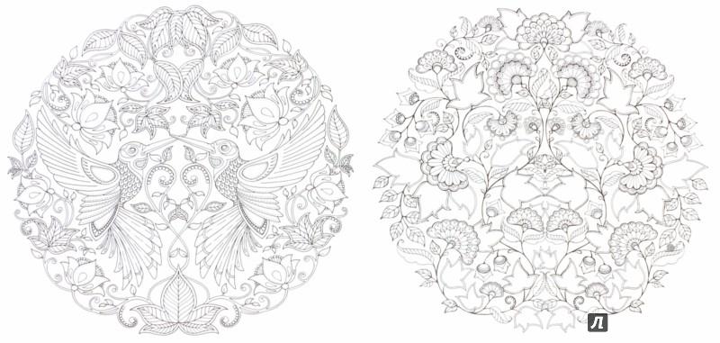 Иллюстрация 1 из 9 для Таинственный сад - Джоанна Бэсфорд ...