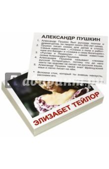 Комплект мини-карточек Выдающиеся личности (40 штук) набор обучающих карточек вундеркинд с пеленок выдающиеся личности