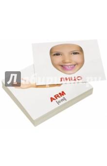 Купить Комплект мини-карточек Human/Человек (40 штук), Вундеркинд с пелёнок, Обучающие игры