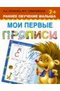 Ткаченко Н. А., Тумановская М. П. Мои первые прописи. Раннее обучение малыша