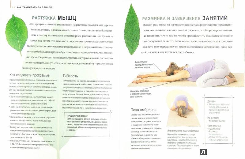 Иллюстрация 1 из 6 для Ваша спина. Практические советы по всем аспектам ухода за вашей спиной - Хобден, Дул, Такер | Лабиринт - книги. Источник: Лабиринт