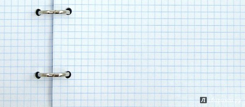 """Иллюстрация 1 из 17 для Тетрадь на кольцах, 160 листов """"ТИГР"""" (39833)   Лабиринт - канцтовы. Источник: Лабиринт"""