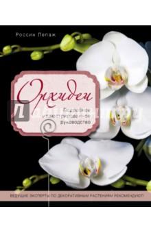 Орхидеи. Подробное иллюстрированное руководство книги эксмо сыны анархии братва