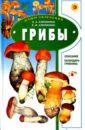 Клепинина Зоя Александровна, Елена Вадимовна Грибы