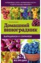 Кузнецова Анна Владимировна Домашний виноградник