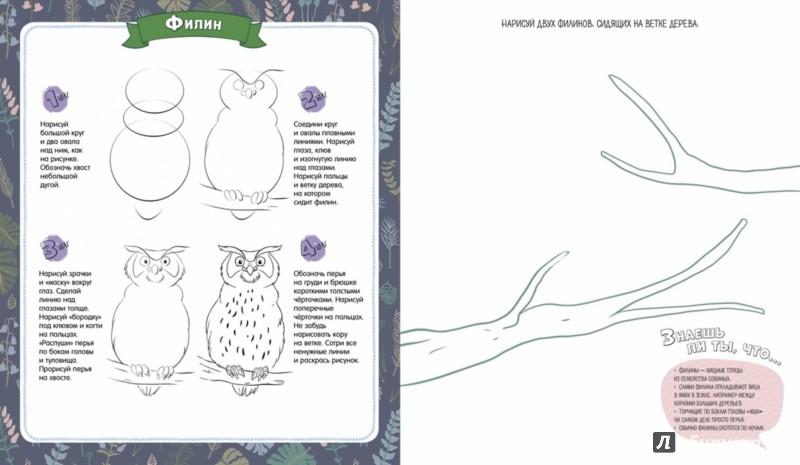 Иллюстрация 1 из 52 для В лесу. Рисуем по шагам - Татьяна Покидаева | Лабиринт - книги. Источник: Лабиринт