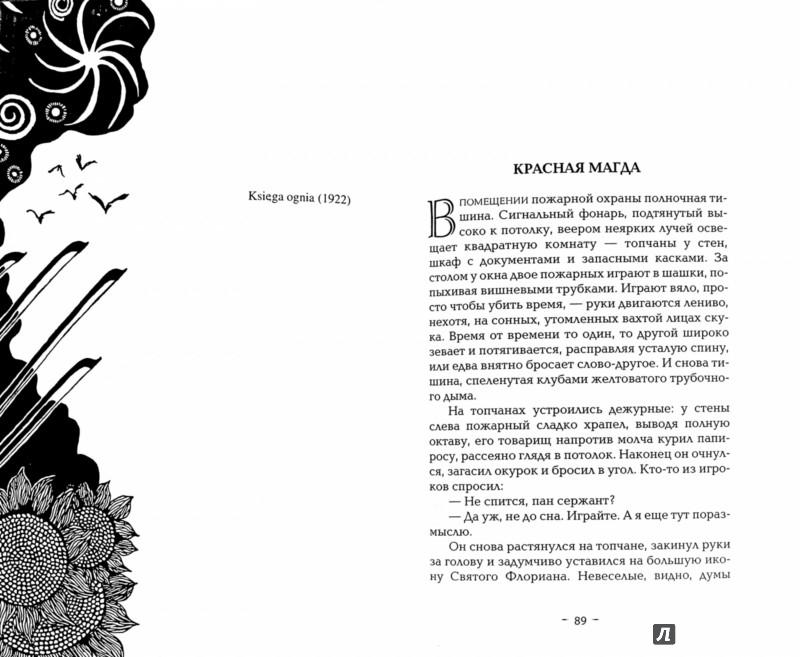 Иллюстрация 1 из 6 для Тень Бафомета - Стефан Грабинский | Лабиринт - книги. Источник: Лабиринт