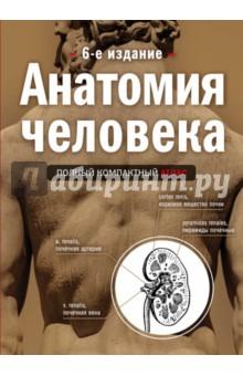Анатомия человека. Полный компактный атлас анна спектор большой иллюстрированный атлас анатомии человека