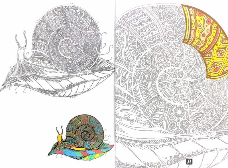 Иллюстрация 1 из 42 для Зендудлы. В царстве животных ...
