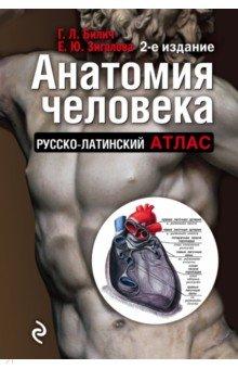 Анатомия человека. Русско-латинский атлас книги владис иллюстрированный атлас анатомии и физиологии человека