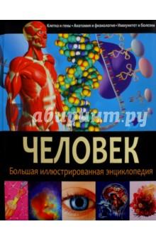 Человек. Большая иллюстрированная энциклопедия шу л радуга м энергетическое строение человека загадки человека сверхвозможности человека комплект из 3 книг