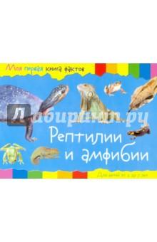 Рептилии и амфибии моя первая книга фактов кошки