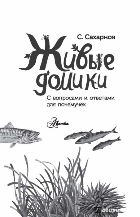 Иллюстрация 1 из 67 для Живые домики. С вопросами и ответами для почемучек - Сахарнов, Мосалов | Лабиринт - книги. Источник: Лабиринт