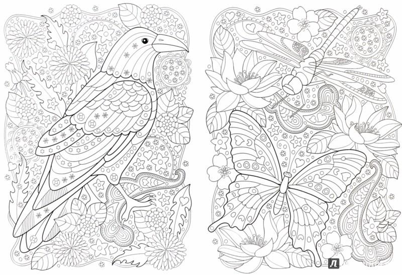 Иллюстрация 1 из 33 для Сады. Раскраска | Лабиринт - книги. Источник: Лабиринт