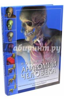 Новый атлас анатомии человека наглядное пособие eastcolight скелет человека