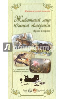 Zakazat.ru: Животный мир Южной Америки. Яркие и юркие + 72 карточки для игры Мемори и викторины.