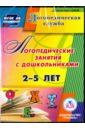 Обложка Логопедические занятия с дошкольниками 2-5 лет (CD)