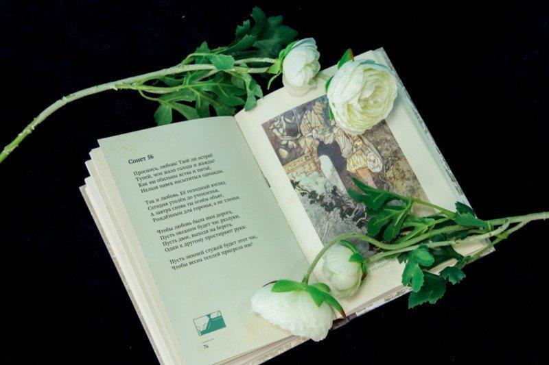 Иллюстрация 3 из 27 для Сонеты - Уильям Шекспир | Лабиринт - книги. Источник: Лабиринт