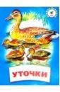 Ушинский Константин Дмитриевич Уточки