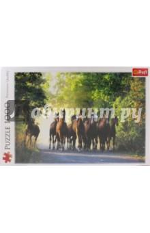 Trefl Puzzle-1000 Табун лошадей (10168) trefl puzzle 500 полнолуние на манхеттене 37261
