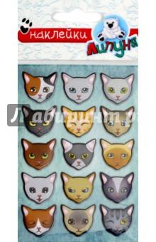 Купить Яркие наклейки Кошки (WPS01), Липуня, Наклейки детские