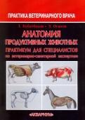 Анатомия продуктивных животных. Практикум для специалистов по ветеринарно-санитарной экспертизе