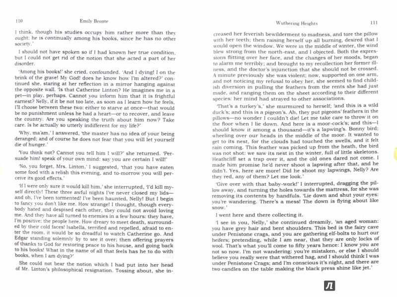 wuthering heights essay madness In wuthering heights, bronte uses insanity to make many points throughout the novel this theme of insanity will be used to  in wuthering heights, one of the main characters shows insanity in many situations this insane character is heathcliff, the boy that was adopted by mr earnshaw, after he.