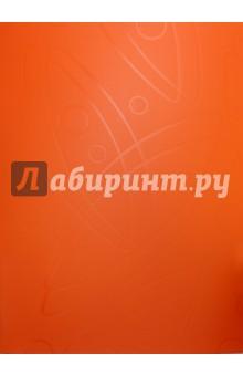 Папка Galaxy (20 прозрачных вкладышей, A4, оранжевая) (GA20OR) папка с 40 прозр вклад бюрократ crystal cr40or a4 пластик 0 5мм оранжевый