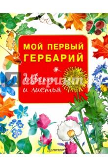 Мой первый гербарий. Цветы и листья. ФГОС анна васильева мой гербарий листья деревьев