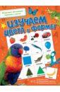 Изучаем цвета и формы развивающий пазл мастер вуд формы и цвета