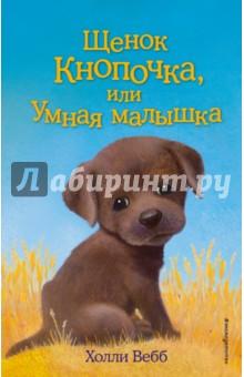 Щенок Кнопочка, или Умная малышка купить шоколадного щенка лабрадора в тюмени