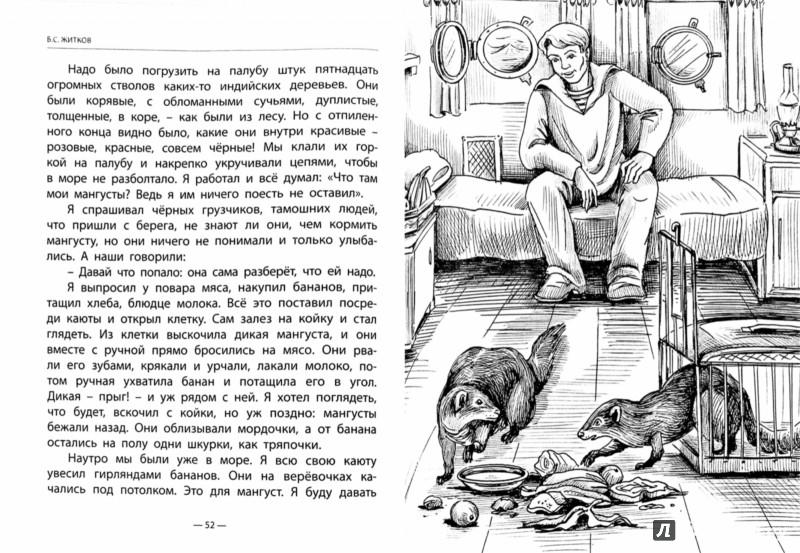 Иллюстрация 1 из 33 для Разиня и другие рассказы - Борис Житков | Лабиринт - книги. Источник: Лабиринт