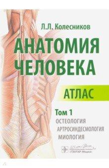 Анатомия человека. Атлас в 3-х томах. Том 1. Остеология, артросиндесмология, миология анатомия по пирогову атлас анатомии человека в 3 х томах том 1 верхн конечн ниж конечн cd