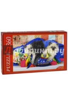 Puzzle-360. Котята и рукоделие (КБ360-7997)