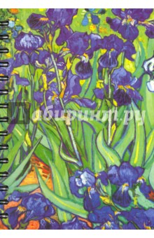 "Скетчбук ""Ван Гог. Ирисы"" (100 листов, А5) (01757)"