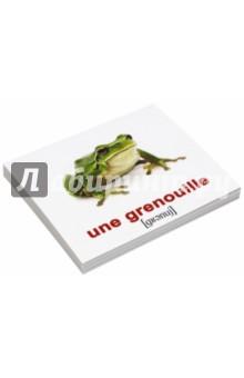 Комплект карточек Мини-20 Les animaix sauvages. Дикие животные (французский язык) un sonador para un pueblo