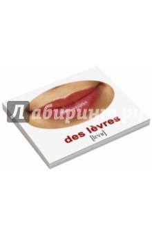 Комплект карточек Мини-20 Les corps. Наше тело (французский язык) un sonador para un pueblo