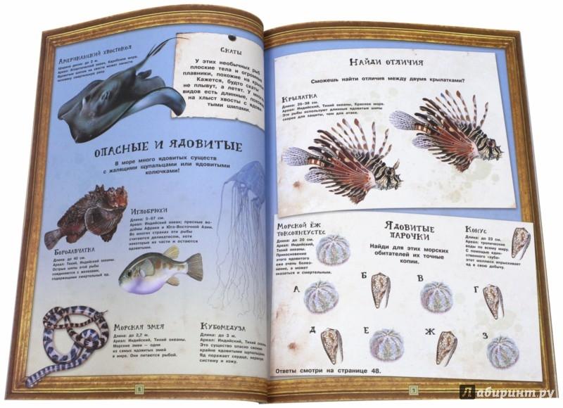 Иллюстрация 1 из 28 для Занимательная зоология. Жизнь океанов - Полли Чизман | Лабиринт - книги. Источник: Лабиринт