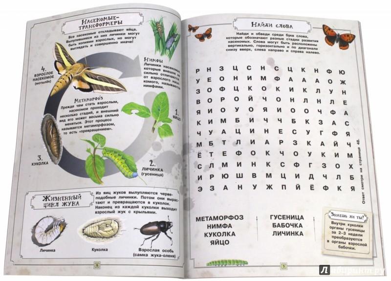Иллюстрация 1 из 25 для Занимательная зоология. Насекомые - Вики Эган   Лабиринт - книги. Источник: Лабиринт