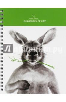 Тетрадь общая Kangaroo (80 листов, спираль, клетка, А5) (N970)