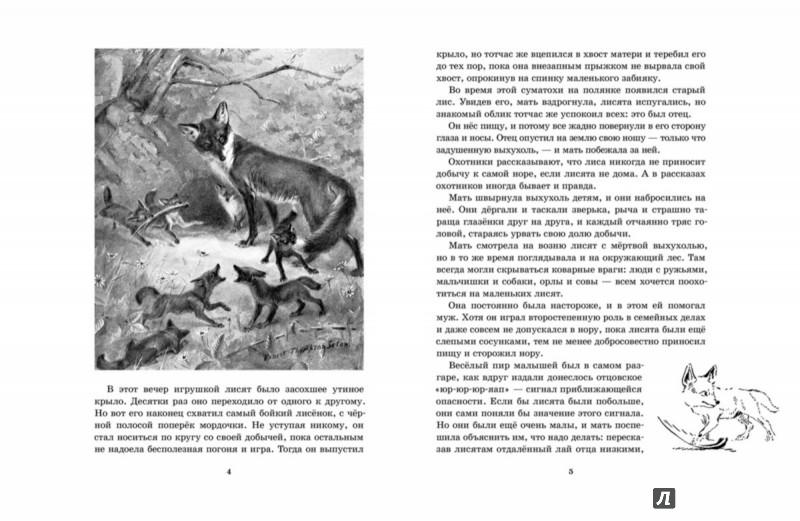 Иллюстрация 1 из 48 для Рассказы о животных. Часть 1 - Эрнест Сетон-Томпсон | Лабиринт - книги. Источник: Лабиринт