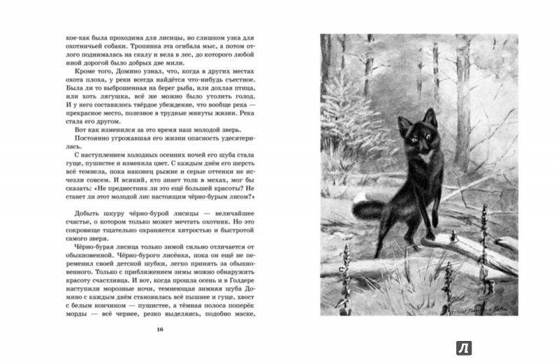 Иллюстрация 5 из 72 для Рассказы о животных. Часть 1 - Эрнест Сетон-Томпсон | Лабиринт - книги. Источник: Лабиринт
