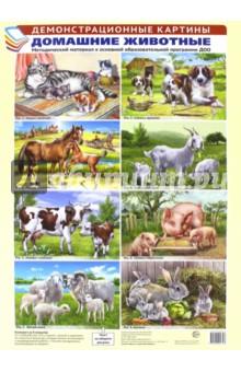 Демонстрационные картины: Домашние животные