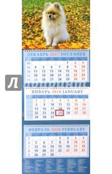 Календарь квартальный на 2018 год Год собаки. Померанский шпиц (14811)